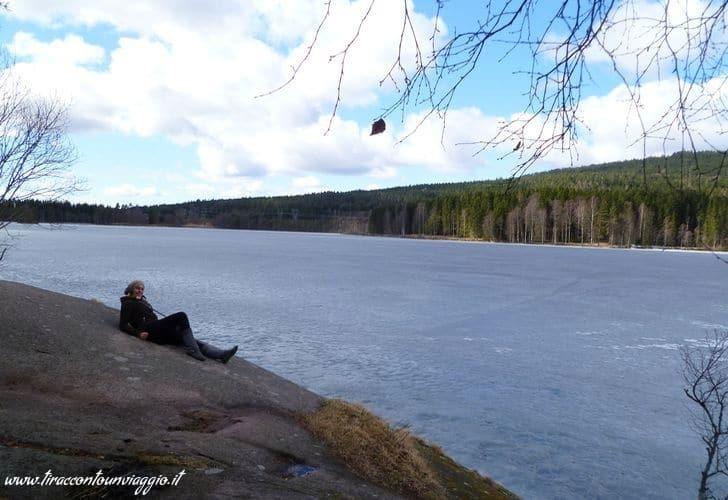 Dintorni_Oslo_foresta_Nordmarka_Norvegia