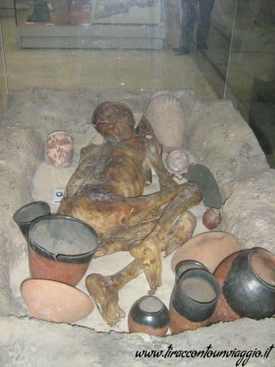 mummia_Ginger