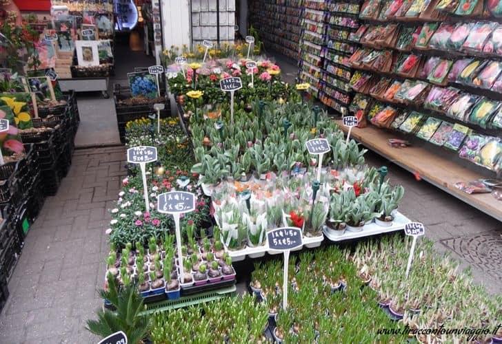 Mercato_fiori galleggiante_Bloemenmarkt_Amsterdam