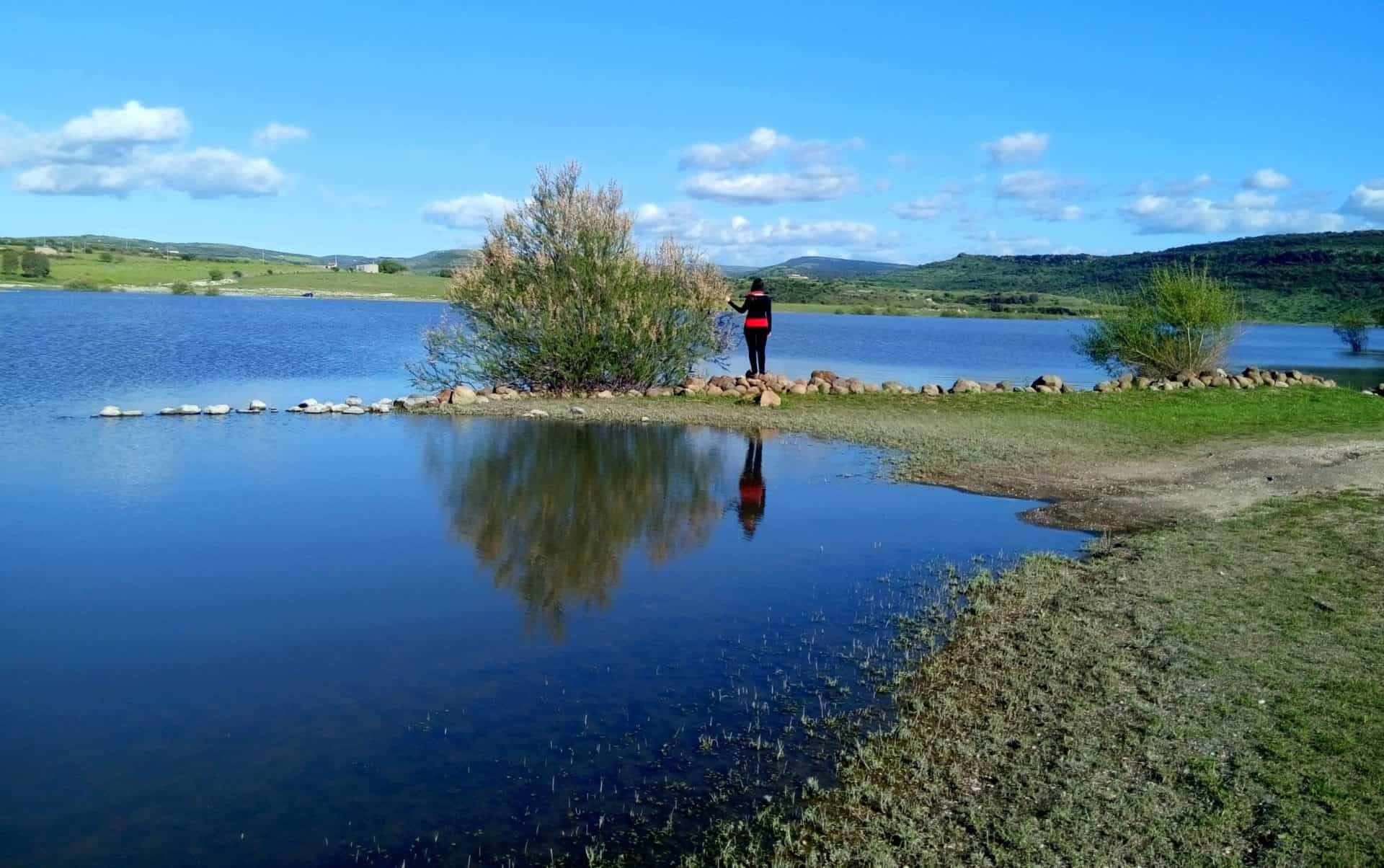 lago_cuga_panorama_stagno